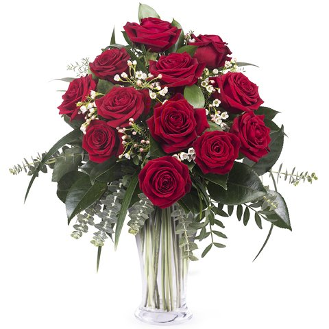 Blooming Love: 12 red roses