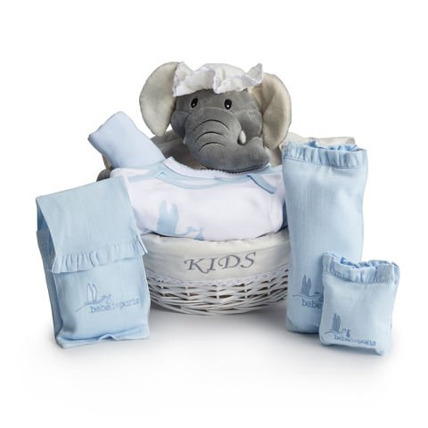 Baby's Essentials Blue