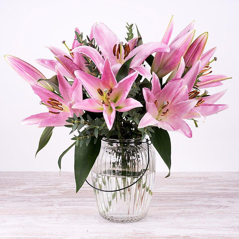 Bonito amanecer - 5 lirios rosas